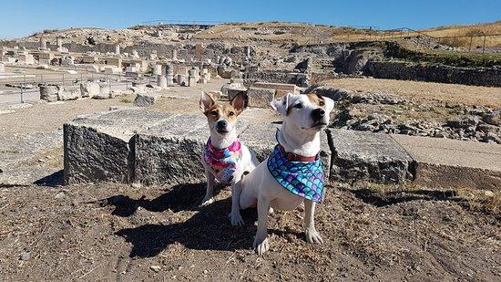 Saelices, España: más ruinas pequeñas de lo que fue glorioso en su día