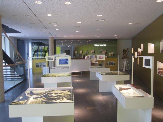 Les Borges Blanques, สเปน: Oficina per rebre els visitants al museu.