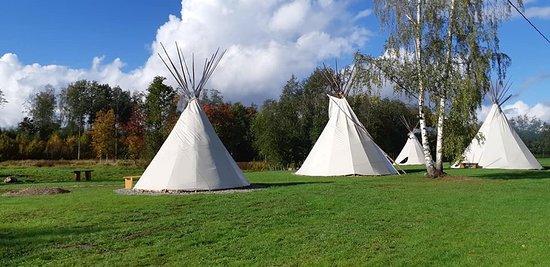 Comté de Parnu, Estonie: Teepee village in Estonia