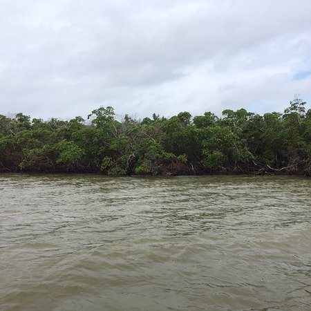 Everglades National Park Boat Tours: photo1.jpg