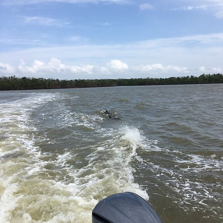 Everglades National Park Boat Tours: photo3.jpg