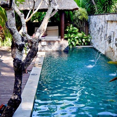 Our Honeymoon At Amarterra Picture Of Amarterra Villas Bali Nusa Dua Mgallery Tripadvisor