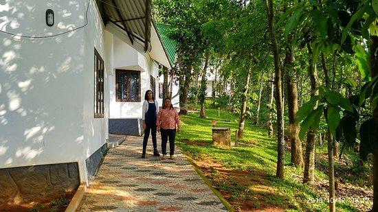 Anachal, الهند: IMG_20181012_081718_HDR_large.jpg
