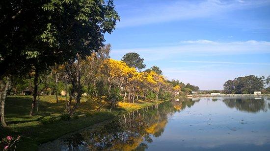 Garca, SP: Floradas dos Ipês, torna a área do lago linda e rende ótimas fotos