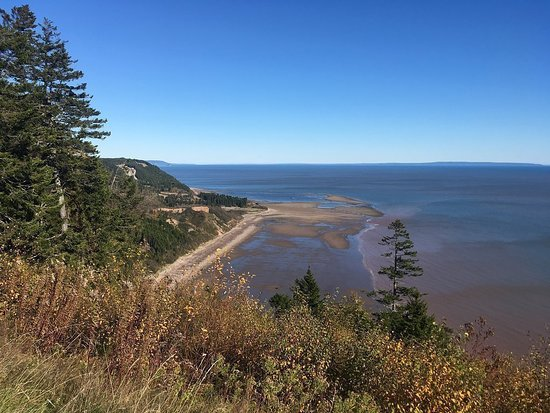 Go Fundy Tours