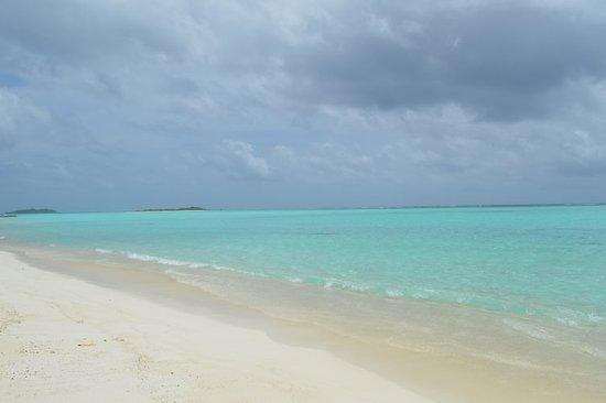 Mathiveri Island: DSC_0202_large.jpg