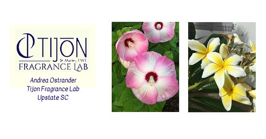 Pelzer, เซาท์แคโรไลนา: Tijon Fragrance Lab - where you create your own scentsational fragrance!