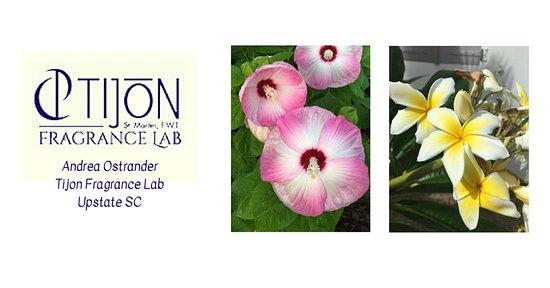 Pelzer, SC: Tijon Fragrance Lab - where you create your own scentsational fragrance!