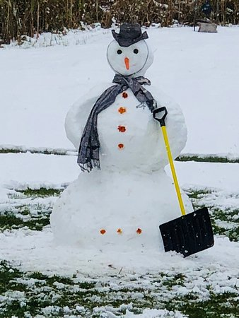 Kabetogama, มินนิโซตา: Mr. Snow Man, it is so nice to see you again. We want everyone to have an opportunity to meet yo
