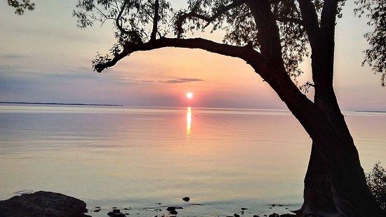Henderson, نيويورك: Great Sunset views!