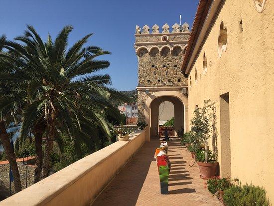 MuSea Museo Vivo del Mare di Pioppi: Terrazza al primo piano