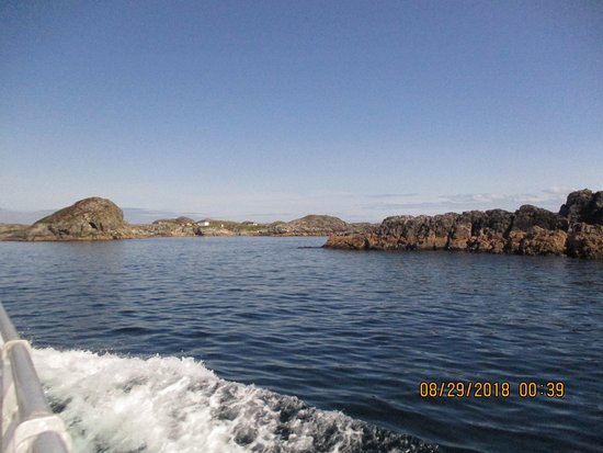 Ketanja Boat Tours: Approaching the outport