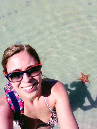 Starfish Beach: Full of stars!!
