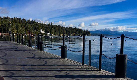 Sunnyside Restaurant and Lodge: Morning View From The Dock (at Sunnyside) Of Lake Tahoe (and seagull upon the post!)