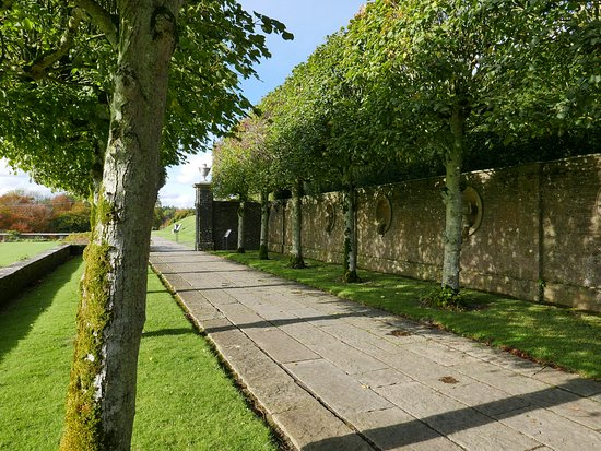 Abbeyleix, Ирландия: tree lined walk