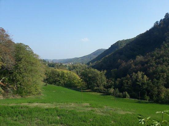 Medesano, Italien: 20181014_144506_large.jpg
