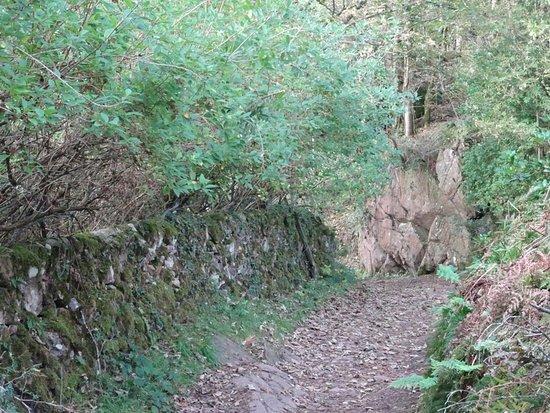 Rockcliffe Trail