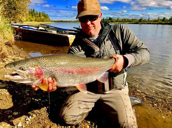 King Salmon Foto