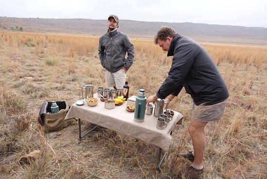 Заповедник Велгевонден, Южная Африка: Koffie omderweg