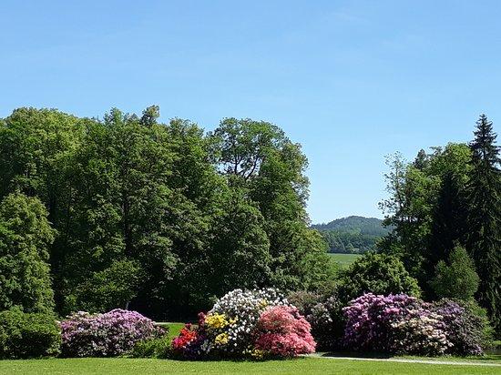 Velke Losiny, جمهورية التشيك: zahrada