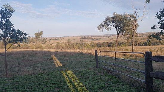 Mundubbera, ออสเตรเลีย: 20181017_060046_large.jpg