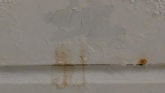 Milesburg, Pensylwania: Water stains and a leak in the ceiling above the shower