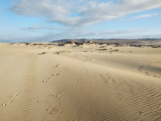 Rancho Guadalupe Dunes Preserve