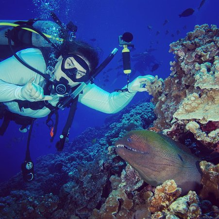 Lahaina Divers: My new best friend at Molokini Crater