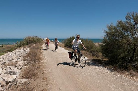 Panoramic Bike Tour: Castles and the...