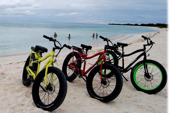 Punta Sur Eco Beach Park Electric...