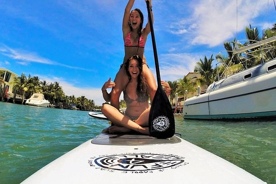 1-Hour Paddleboard Rental