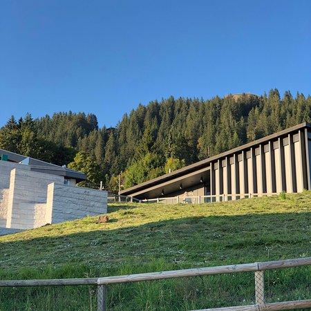Rigi Kaltbad, Switzerland: photo1.jpg