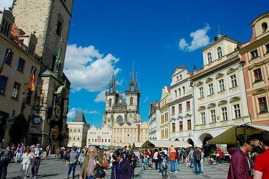 Halv dag Praha City Walk