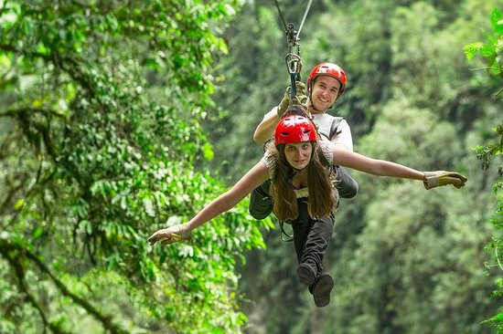 Congo Trail Canopy Tour desde Playa...