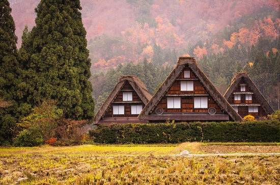Day Trip to Shirakawago and Hida...