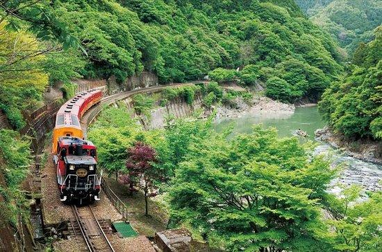 Viagem de um dia ao Trem Romântico de...