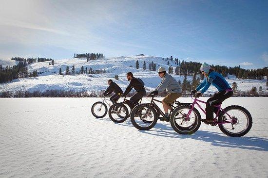 Fat eBike Ride on Mount Royal