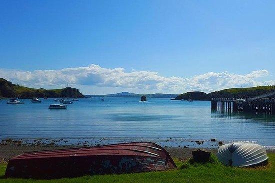 Half-Day Double Headland Coastal Walk...