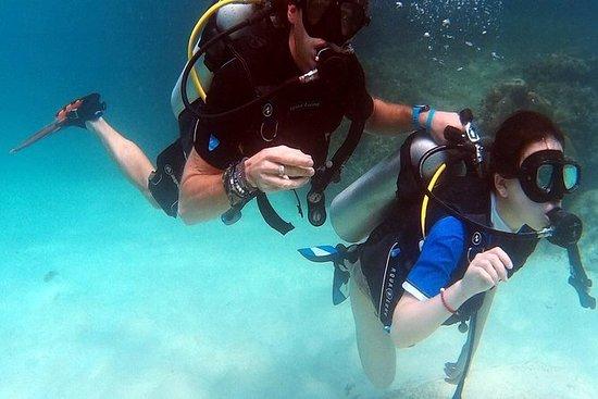 Meio dia PADI Discover Scuba Diving...