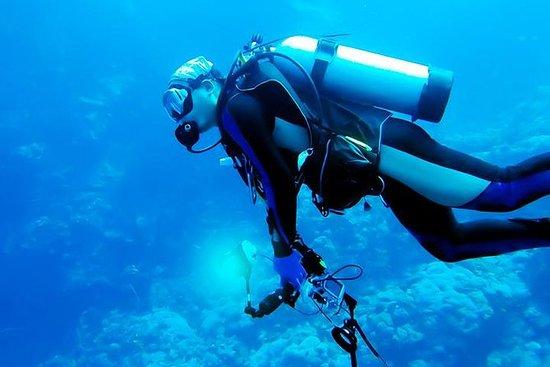 One Day PADI Scuba Diving Adventure...