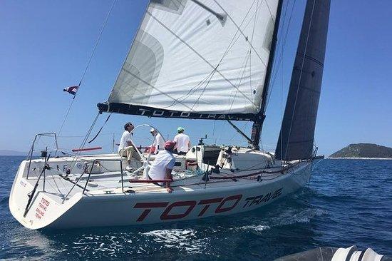 Half-Day Small-Group Sailing...