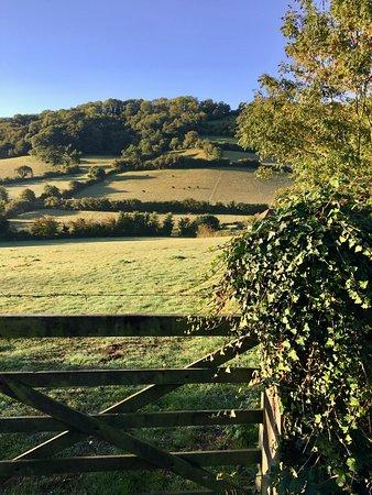 On a morning walk around Branscombe