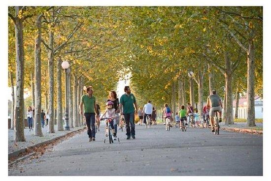 Visite guidée à vélo de Lucca...