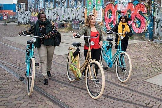自転車でアムステルダムの隠された芸術と文化を探索する