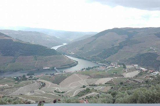 Tour (Douro, Aveiro, Fátima och Porto)
