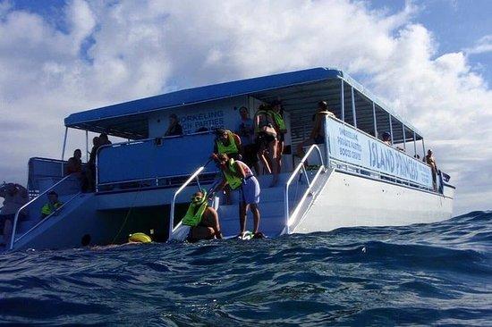 Snorkelhavet eventyr