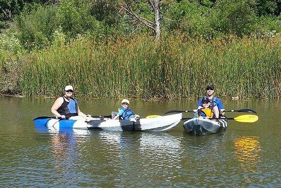 Excursion en kayak à la rivière Napa...
