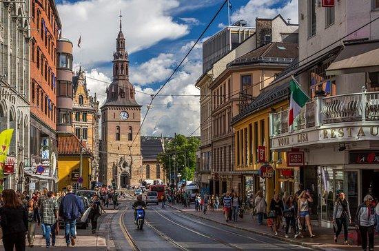 Melhor de Oslo e Museu dos Navios...