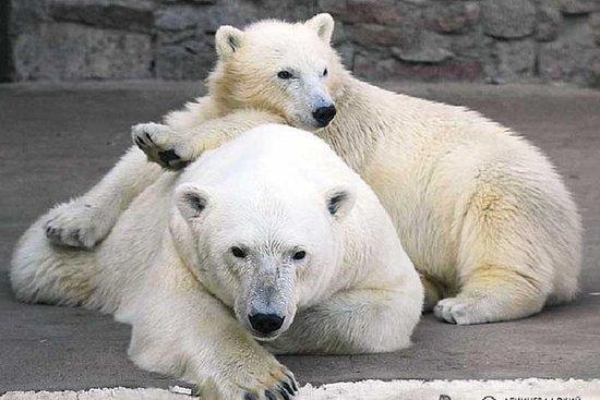Leningrad (St Petersburg) Zoo...