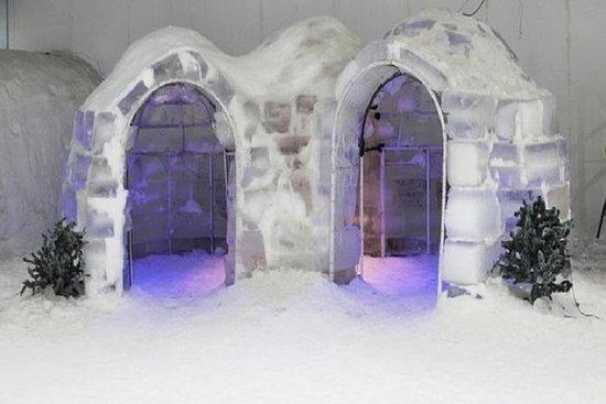 Entrada Iceberg Snow World